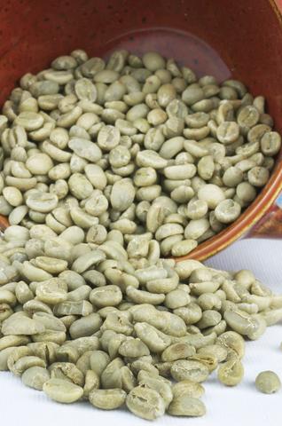 焙煎前のコーヒー豆ってこんな色をしているんですね